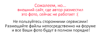 аварии Игоря сколько должен весить кобель для вязки чихуа хуа объявлений продаже